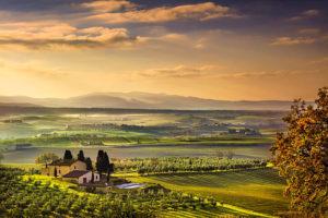 Тосканская Маремма. Утренний пейзаж