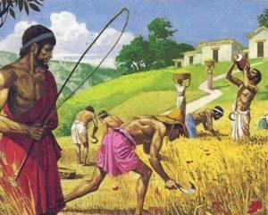 Рисунок: рабы возделывают землю в Древнем Риме